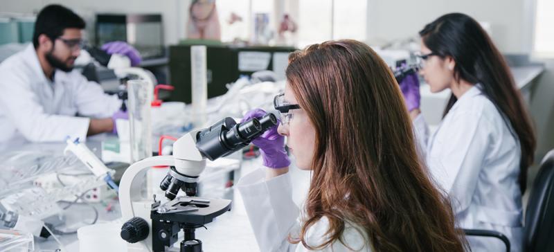 Bachelor of Science in Biology | American University of Sharjah