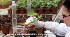 Bachelor of Science in Environmental Health Management